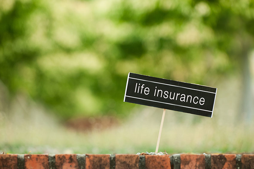 Life Insurance Canada Quotes Interesting Simplified Life Insurance In Canada  Ratelab.ca