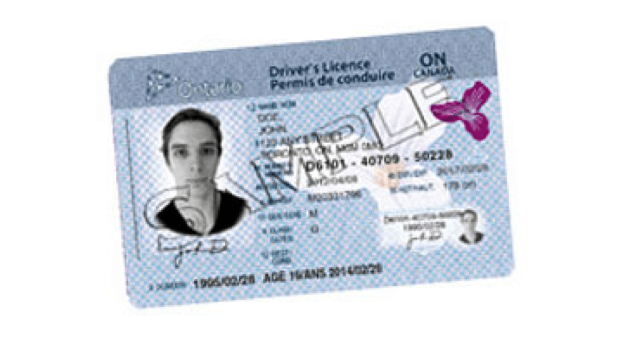 Ontario G2 Drivers License
